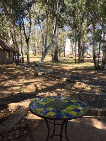 Bingelela Lodge: photo2.jpg
