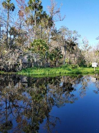 Astor, FL: 20171125_111024_large.jpg