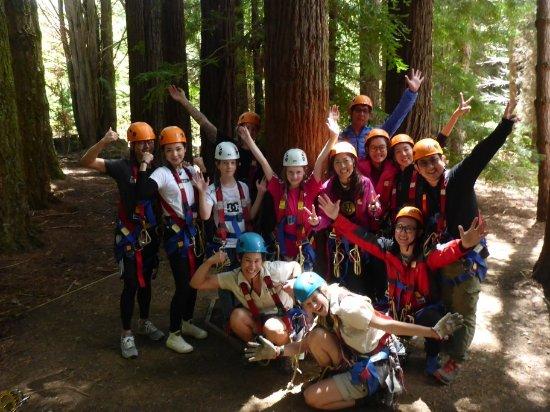 Hollybank Treetops Adventure: f3f73e1f-63d2-4c08-abcf-45e549e63907_87377391-2c13-4d2a-adf5-c6cc1eb7e09f_o-1_large.jpg