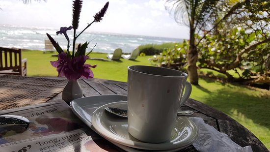 Ocean Spray Beach Apartments: My morning coffee...viewed from the cafe.