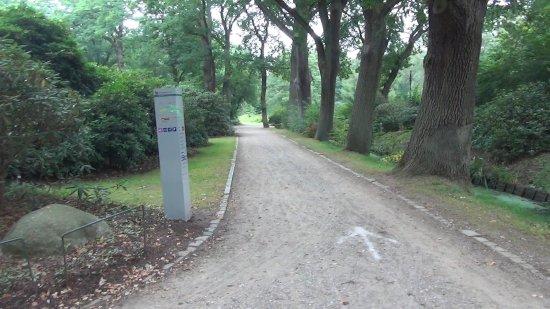 Rhododendronpark Bremen : Rhododendronpark - Allmerspark