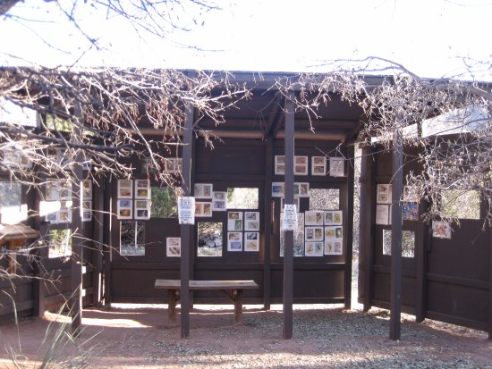 Canyon, TX: Bird watching blind behind the Trading Post