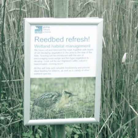 Westleton, UK: RSPB Minsmere