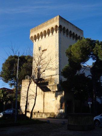 Torre Medicea