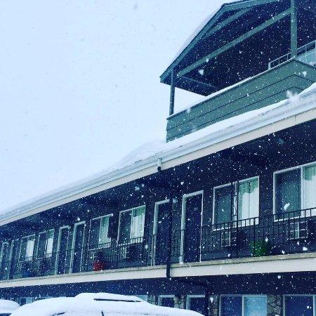 MONARCH MOTEL $85 $̶9̶2̶ Prices & Hotel Reviews Moscow Idaho