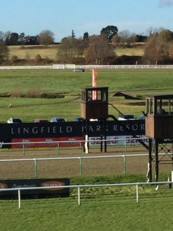 Lingfield Park: Another view