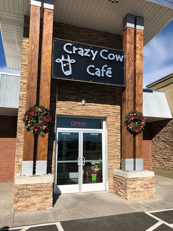 Crazy Cow Cafe: photo0.jpg