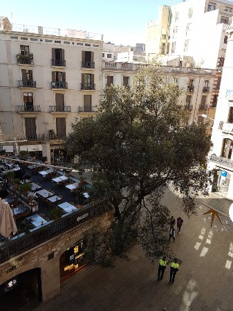 Catalonia Catedral: Looking out front to the right