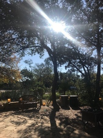 Lady Bird Johnson Wildflower Center: View