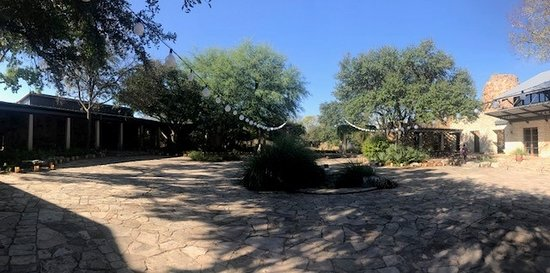 Lady Bird Johnson Wildflower Center: Courtyard