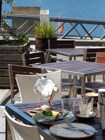 Cargo Restaurant Docklands Reviews