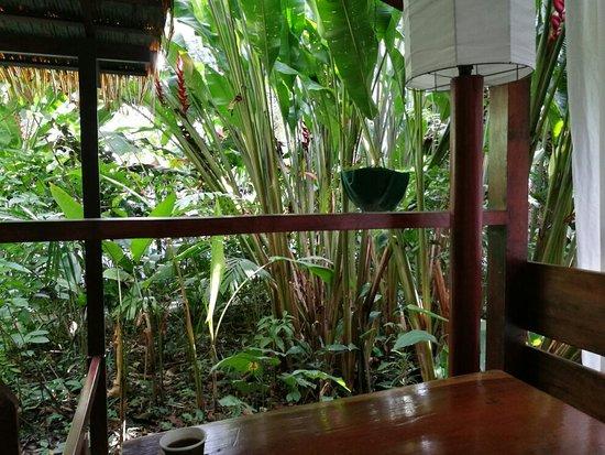 Namuwoki Lodge: IMG_20171126_092728_large.jpg