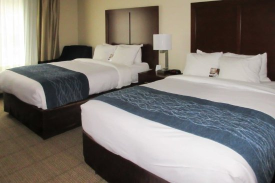 Wilder, KY: Guest room with two beds
