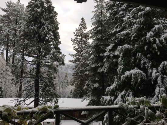 Fish Camp, CA: View from the door/front porch of the queen room the morning after a snowfall