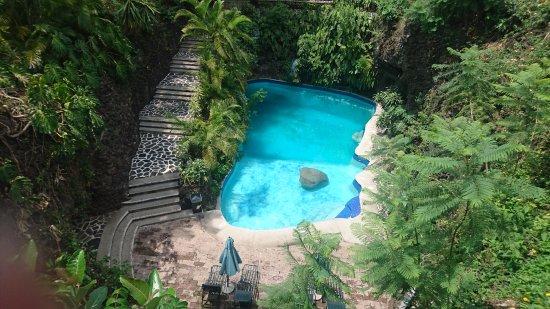 Imagen De Hotel Jacarandas