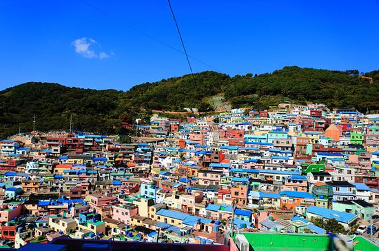 Busan Shore Excursion Tour with Gamcheon Culture Village