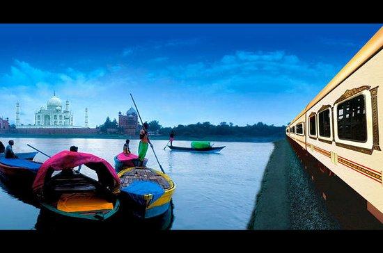Dia Inteiro Taj Mahal & Agra Tour...