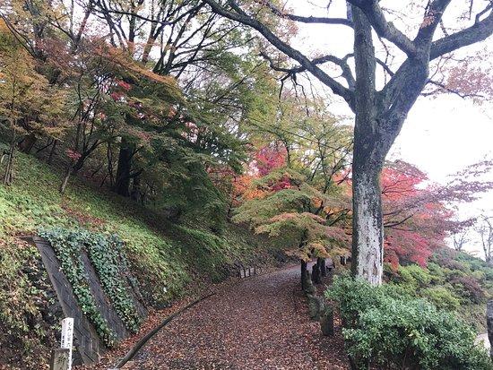 Sabae, Japan: photo1.jpg