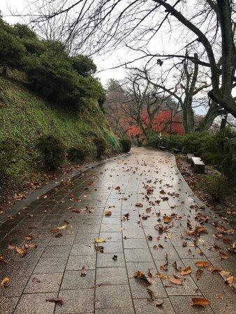 Sabae, Japan: photo2.jpg