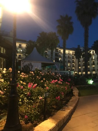 Sheraton Addis, a Luxury Collection Hotel: photo2.jpg