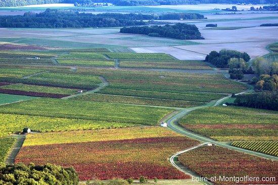 Sainte-Catherine-de-Fierbois, Frankreich: Survolez les vignes de Touraine en montgolfière
