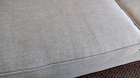 Loews Coronado Bay Resort: pee stained couch
