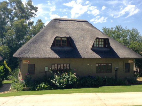 Addo, Sudáfrica: Orange groves and cottages Avoca.