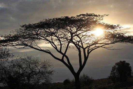 St Lucia, Afrique du Sud : puesta de sol en Isimangaliso