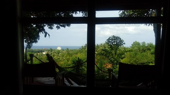 Daisy Resort Photo