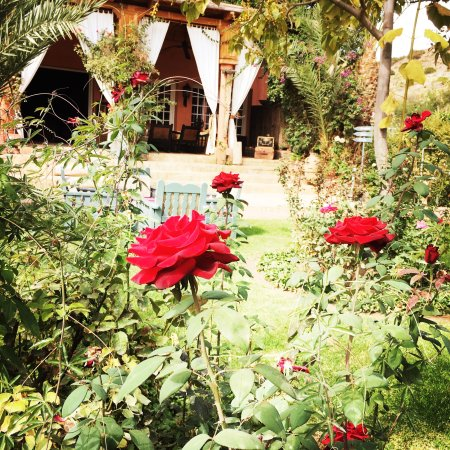 Ouirgane, Marruecos: Classic colonial style with stunning gardens