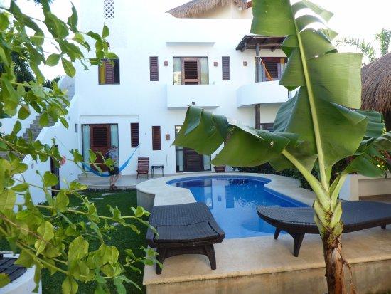 Tamarindo Bed and Breakfast: Vue du jardin, des locations rdc et étage...