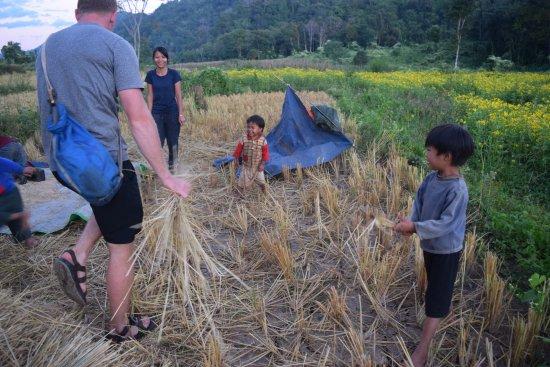 Lashio, Birma: Rice straw fun!