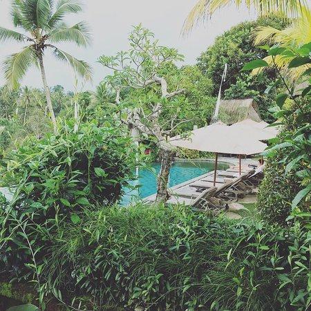 Puri Gangga Resort : photo6.jpg