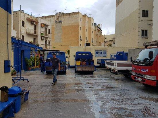 Bugibba, Malta: 20171117_081927_large.jpg