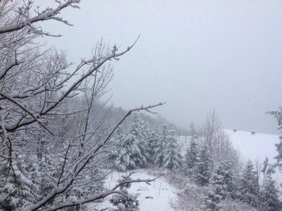 Saint-Alexis-des-Monts, Kanada: received_2067341463495257_large.jpg