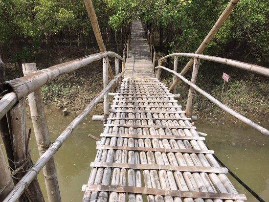 Aklan Province, Philippines: Bamboo bridge