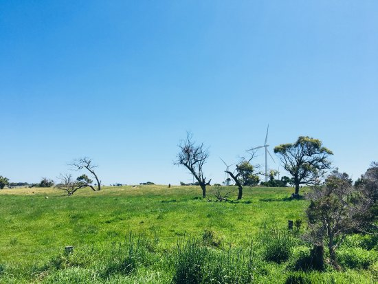 Bald Hills Creek Wildlife Reserve