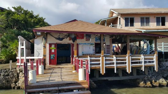 Seagrape Plantation Resort: Dive Center