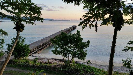 Vanua Levu, Fiyi: 20171101_052950_large.jpg
