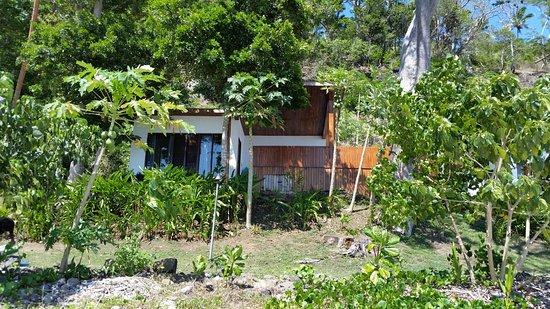 Vanua Levu, Fiyi: 20171101_093534_large.jpg