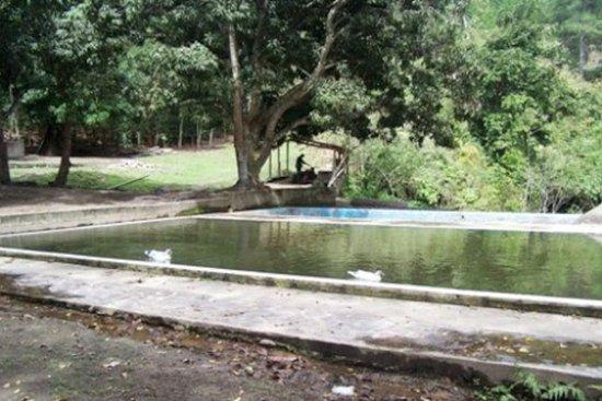"""Jalapa, Nicaragua: Recommended vist: Ecological Farm """"Sonzapote"""", el Limon (appr. 20 km.)"""