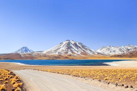 Chile: Laguna Miscanti
