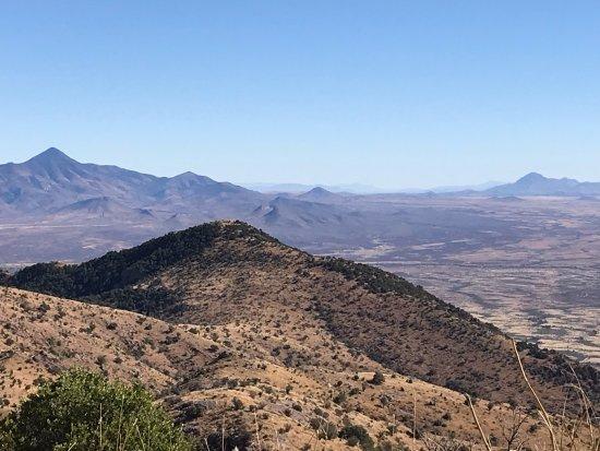 Hereford, AZ: View from Coronado peak