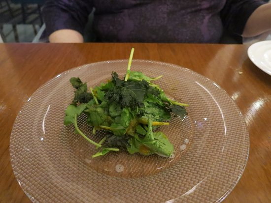 Crispy kale salad fish by jose andres for Fish by jose andres
