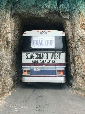 GeoFunTrek Tours: IMG952608_large.jpg
