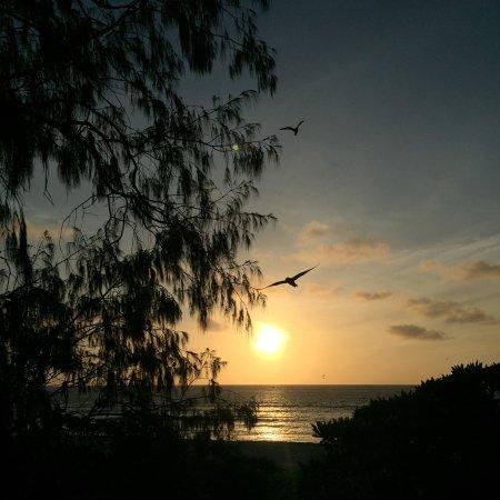 Νησί Lady Elliot, Αυστραλία: photo6.jpg