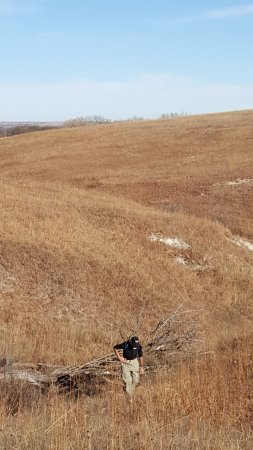 The Willa Cather Foundation: Willa Cather Memorial Prairie in late November.