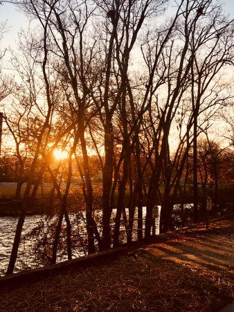 The Inn On The River: photo1.jpg