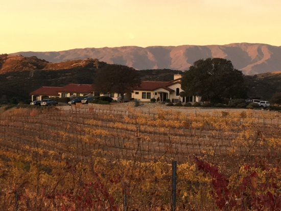 Soledad, CA: Serenity amongst the vineyard