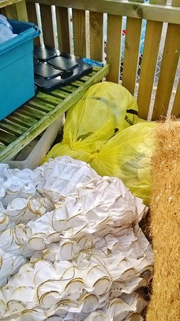 Seaton, UK: fly tipped rubbish including yellow clinical waste bags at council flats